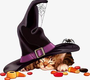 Halloween Cat Meng Meng Da PNG