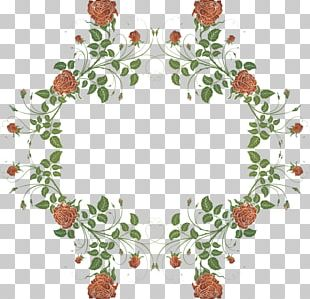 Drawing Flower Floral Design PNG