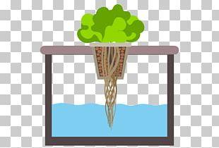 Nutrient Hydroponics Deep Water Culture Aquaponics Miracle-Gro AeroGarden PNG