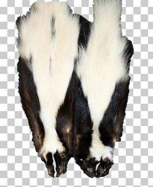 Fur Skunkfell Beaver Hide PNG