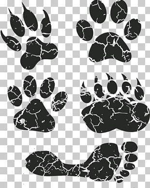Dog Paw Footprint Animal Track PNG