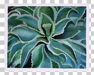Agave Azul Succulent Plant Aloe Vera Flowering Plant PNG