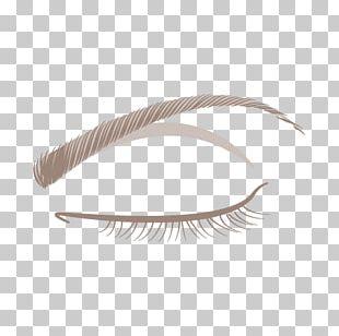 Eyebrow Eyelash Feather PNG