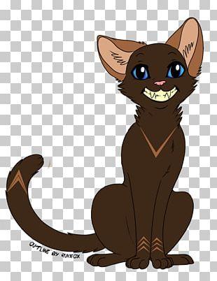 Whiskers Kitten Black Cat Illustration PNG