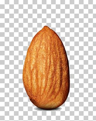 Almond Single PNG