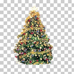 Artificial Christmas Tree Greeting Christmas Card PNG