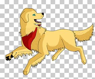 Dog Breed Lion Cat PNG
