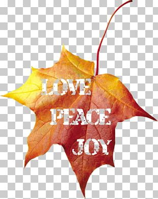 Autumn Leaves Maple Leaf Text PNG
