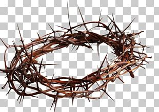 Crown Of Thorns Christian Cross Symbol Thorns PNG