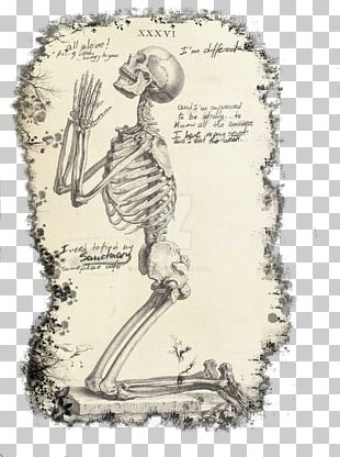 Praying Hands The Anatomy Of The Human Body De Humani Corporis Fabrica Libri Septem Skeleton Prayer PNG