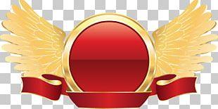 Adobe Illustrator Gold PNG