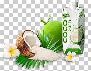 Coconut Milk Betrimex Coconut Water Coconut Oil PNG