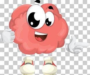Human Brain Skull Human Head PNG