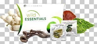 Leaf Vegetable Vegetarian Cuisine Food Herb Flavor PNG