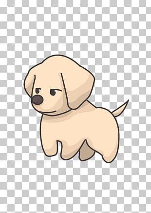 Labrador Retriever Golden Retriever Puppy Poodle Pomeranian PNG