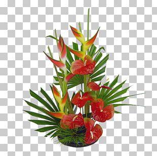 Floristry Flower Bouquet Floral Design PNG