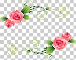 Garden Roses Flower Photography PNG