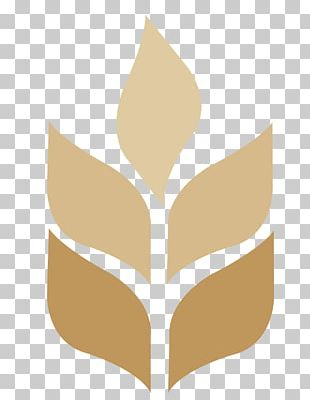 Calvary Chapel-The Chino Valley Chino Hills Pastor Organization Logo PNG