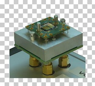 Measurement Biology PNG