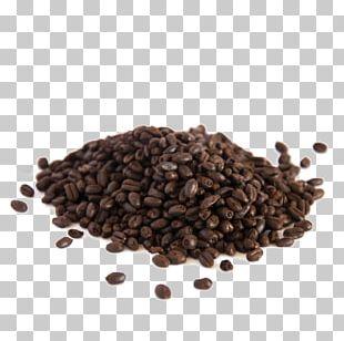 Pilsner Beer Malt Kona Coffee Seed PNG