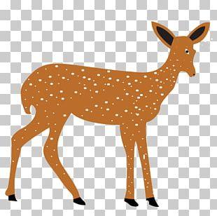 Deer Silhouette Graphics Illustration PNG