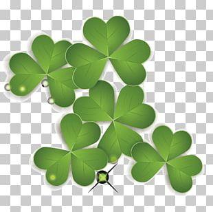 Saint Patricks Day Four-leaf Clover PNG