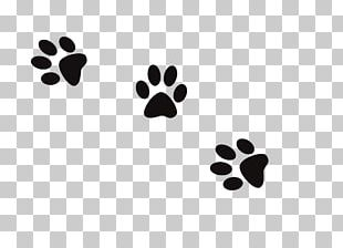 Dog Cat Paw Footprint PNG