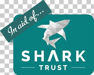 Shark Trust Great White Shark Project AWARE Shark Cage Diving PNG