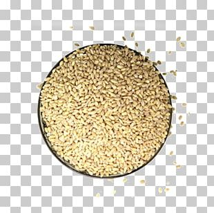 Barley Cereal Germ Rice PNG