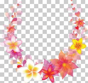 Floral Design Stock Photography PNG