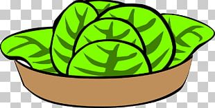 Fruit Salad Chicken Salad Potato Salad Bowl PNG