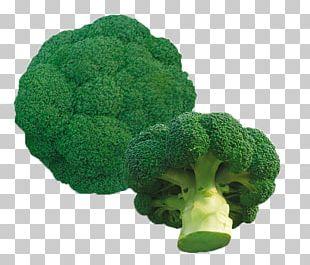 Organic Food Seed Vegetable Broccoli Okra PNG