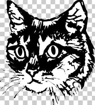 Kitten Sphynx Cat Drawing Pet PNG