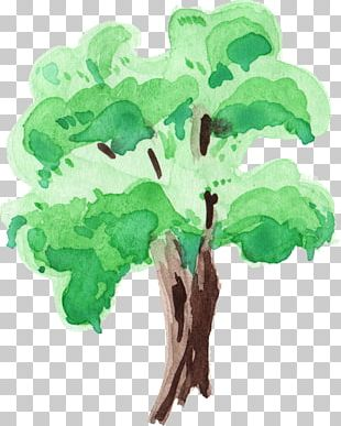 Tree Watercolor Painting Branch PNG