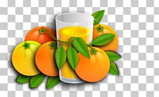Orange Juice Tangerine Mandarin Orange Vegetarian Cuisine PNG