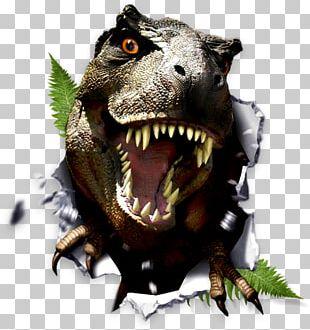 Tyrannosaurus Feathered Dinosaur PNG