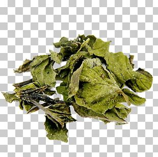 Peppermint Bancha Oolong Leaf Vegetable PNG
