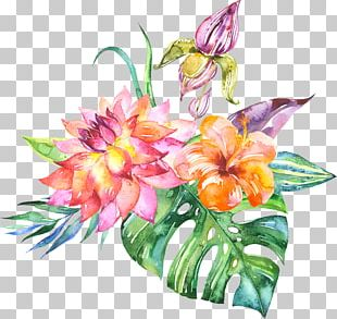 Watercolor Painting Flower Art PNG