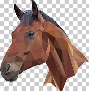 Horse Head Mask T-shirt PNG
