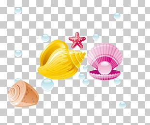 Pearl Seashell Conch PNG