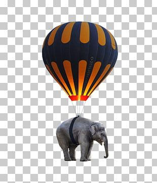 Hot Air Ballooning Elephant Toy Balloon PNG
