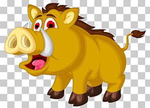 Wild Boar Animation Illustration PNG