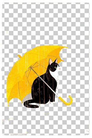 Find Cats Umbrella Rain PNG
