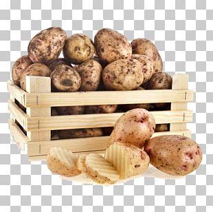 Russet Burbank Vegetable Fruit Food Radish PNG