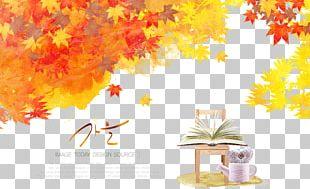 Autumn Maple Leaf Illustration PNG