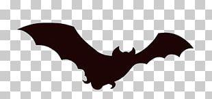 Bat Animation Cartoon PNG
