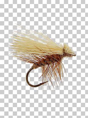 Elk Hair Caddis Artificial Fly Caddisfly Fly Fishing PNG