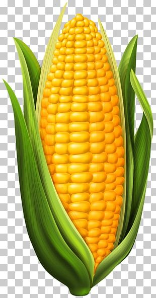 Candy Corn Corn Dog Corn On The Cob Maize PNG