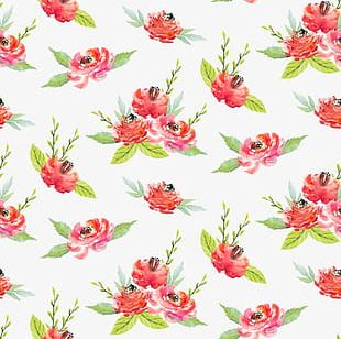 Small Fresh Flowers Watercolor Background Shading PNG