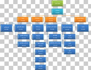 Organizational Chart Company Marketing Text PNG